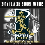 Победители Players Choice Awards 2015